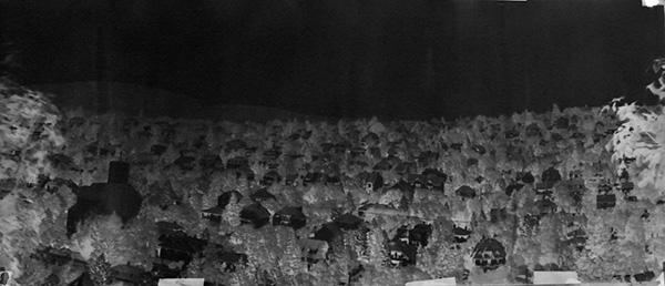 Panoramakep a kozepso loresbol 100 x 50 cm