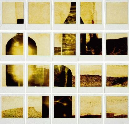 1998 polaroid photogram 66 x 45 cm