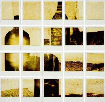 1998 polaroid photogram 66 x 45 cm