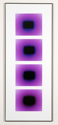 2007 color photogram 70 x 140 cm
