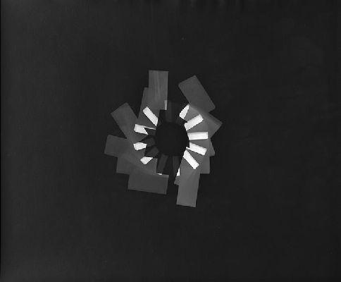 black white photogram 1988 2014 40x50 cm